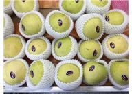 水果发泡网套